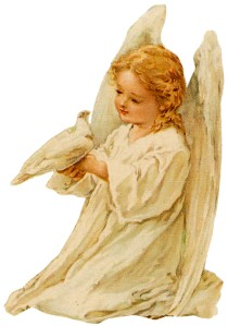 Child angel with dove